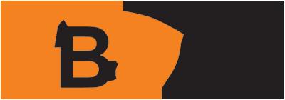 Logo_VBEnl